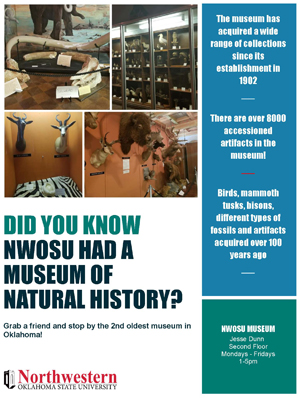 Museum Flyer - Visit the Museum